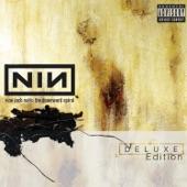 Nine Inch Nails - Ruiner