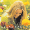 Strawberry Wine - Deana Carter mp3