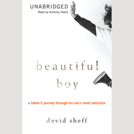 Beautiful Boy: A Father's Journey Through His Son's Meth Addiction audiobook