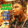 Jah Gives Life - Gappy Ranks