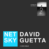Ice Cold - Netsky & David Guetta
