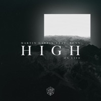 MARTIN GARRIX feat BONN - High On Life Chords and Lyrics