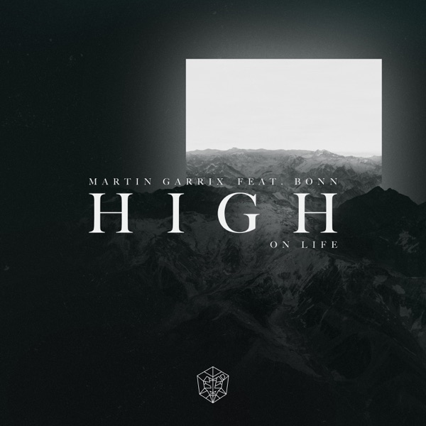 High on Life (feat. Bonn) - Martin Garrix song image
