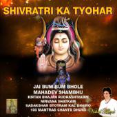 Om Namah Shivaya 108 Kirtan Chants Dhun Chorus Vandna Shivas Anand