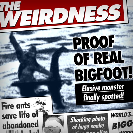 Cover image of The Weirdness