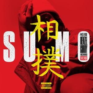 Sumo - Single Mp3 Download