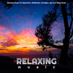 Relaxing Music, Spa Music & Relaxing Music Therapy - Relaxing Music For Relaxation, Meditation, Studying, Spa and Sleep Music