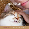 David Teie - Music for Cats Album Two  artwork