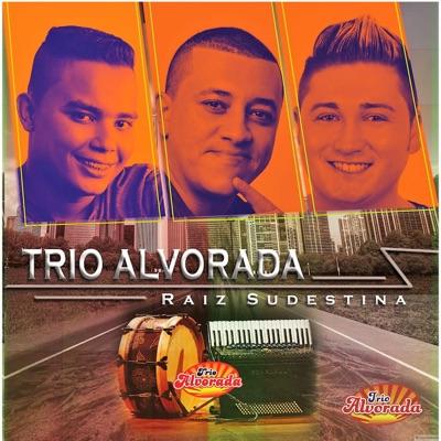 Raiz Sudestina - Trio Alvorada
