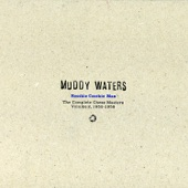 Muddy Waters - She's Alright