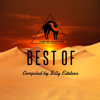Best of Cafe De Anatolia - Various Artists