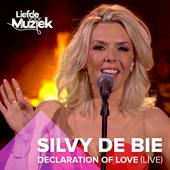 Declaration of Love (Uit Liefde Voor Muziek)