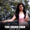 Tere Shehar Chon feat Navi Ferozpurwala Single