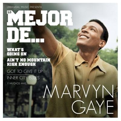 Lo Mejor de Marvin Gaye - Marvin Gaye