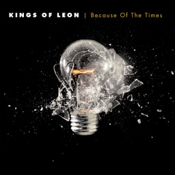 kings of leon use somebody song download