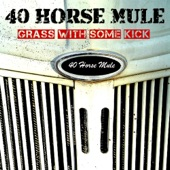 40 Horse Mule - Farm Country