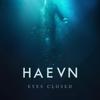 HAEVN - Fortitude kunstwerk