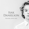Isak Danielson - Falling into You bild