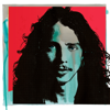 Chris Cornell, Soundgarden & Temple of the Dog - Chris Cornell