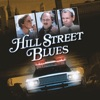 Hill Street Blues, Season 6 - Synopsis and Reviews