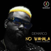 No Wahala (feat. Akon & Runtown) - Single
