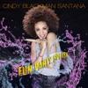 Fun Party Splash (feat. Carlos Santana) - Single, Cindy Blackman Santana