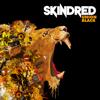 Skindred - Union Black Grafik