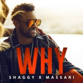 Why - Single