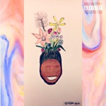Curtis Roach - Blossom