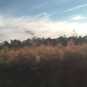 sadgods - Like Autumn feat. Powfu