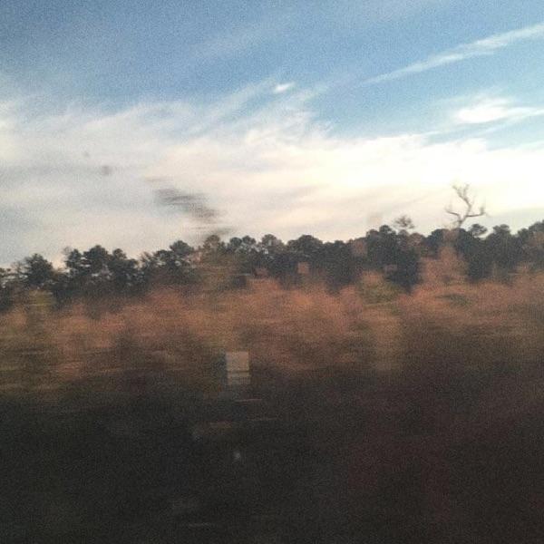 Like Autumn (feat. Powfu) - Single