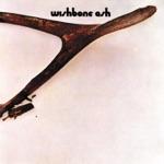 Wishbone Ash - Blind Eye