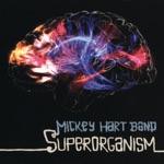 Mickey Hart Band - Aliromba O Saro