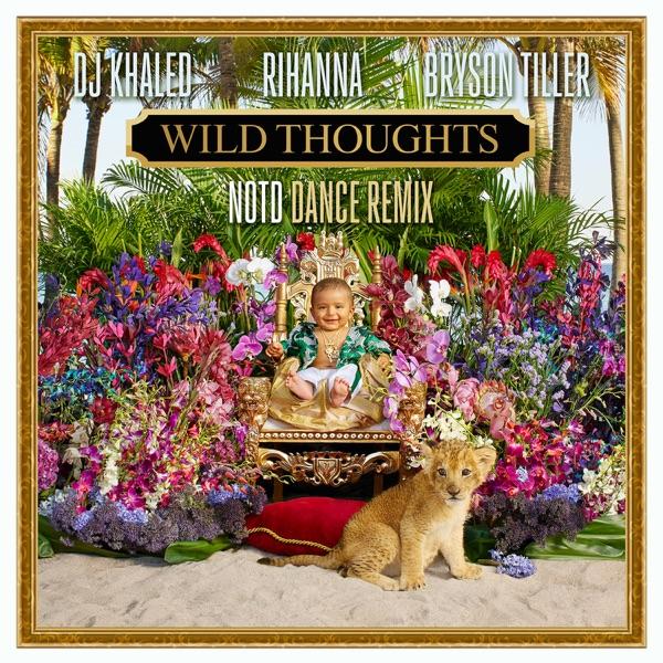Wild Thoughts (feat. Rihanna & Bryson Tiller) [NOTD Dance Remix] - Single
