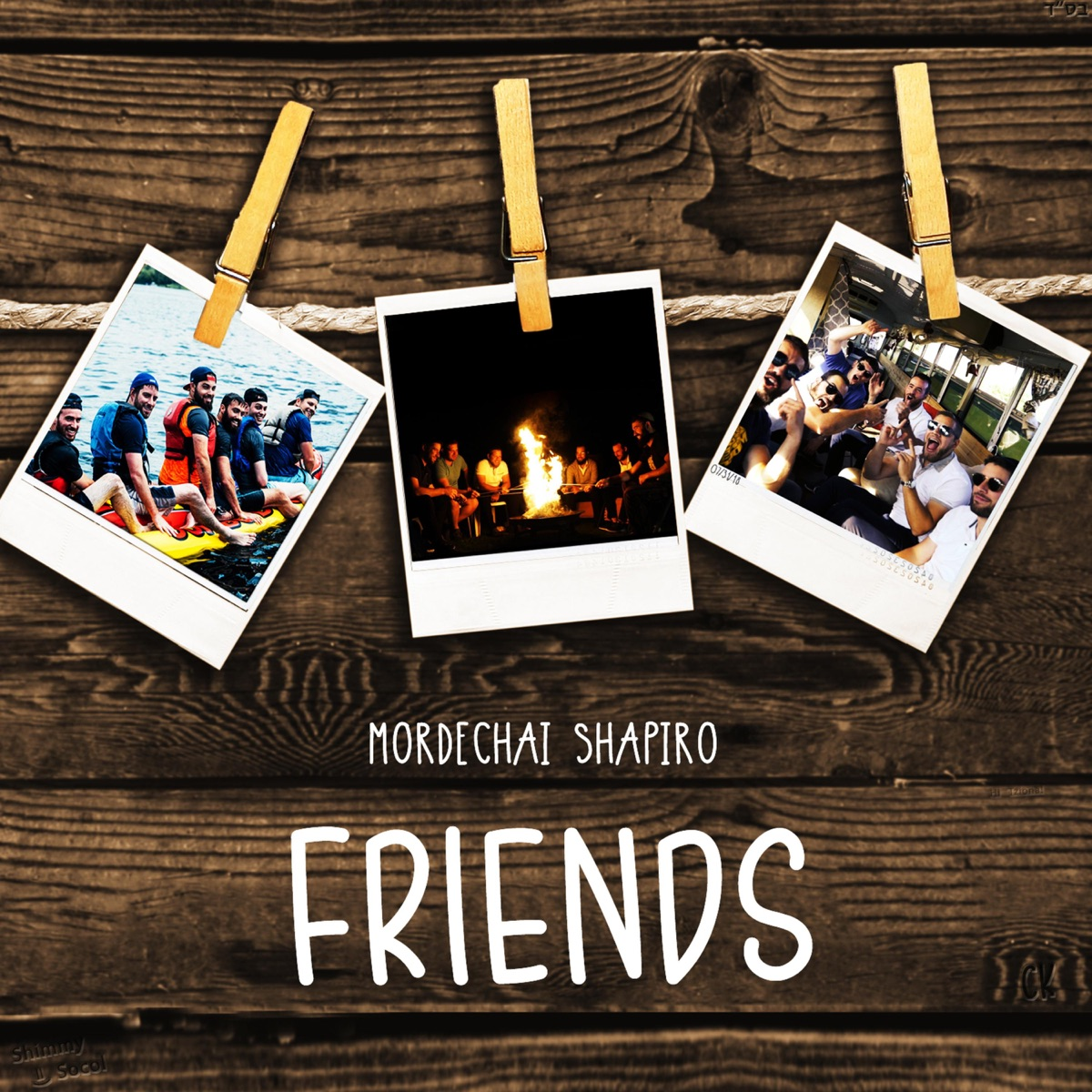 Friends - Single Mordechai Shapiro CD cover