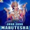 Jaya Jaya Marutesha