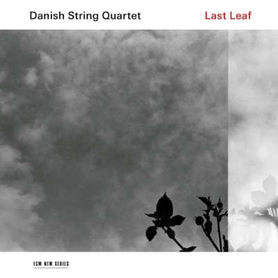 Last Leaf - Danish String Quartet album