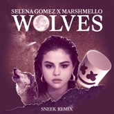 Wolves (Sneek Remix) - Single