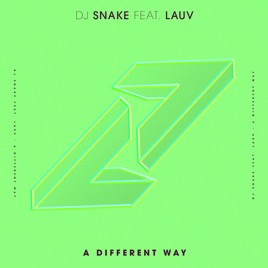 DJ Snake feat. Lauv - A Different Way mp3