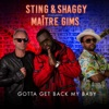Gotta Get Back My Baby (feat. Maître Gims) - Single