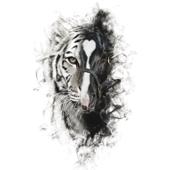 Para Sacarte De Mi Vida (feat. Los Tigres del Norte) - Alejandro Fernández
