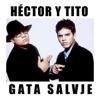 Hector y Tito - Gata Salvaje ilustración