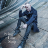 Sting - What Have We Got? (feat. Jimmy Nail) bild