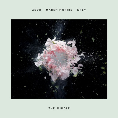 The Middle - Single MP3 Download