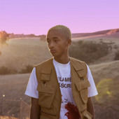 The Sunset Tapes: A Cool Tape Story-Jaden Smith