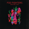 Foo Fighters - Walk artwork