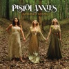 Interstate Gospel, Pistol Annies