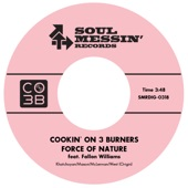 Cookin' On 3 Burners - Force of Nature (feat. Fallon Williams)