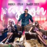 Passion (feat. Shaggy & Costi) - Single