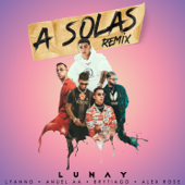 A Solas (feat. Brytiago & Alex Rose) [Remix]